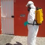 dedetizacao-de-insetos-rasteiros1-150x150