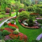 jardinagem1-150x150
